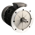 Electric motor 400V T6 0.06kW